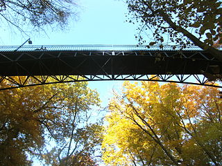 Bridge over the ravines